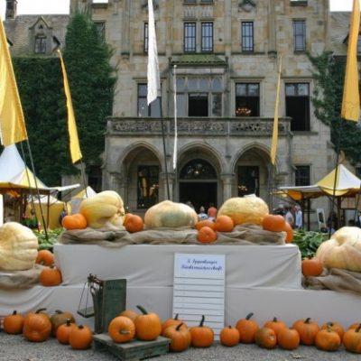 Schloss Ippenburg - Herbstfest