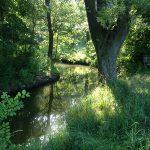 Rittergut Bocka: Entspannung in der Natur