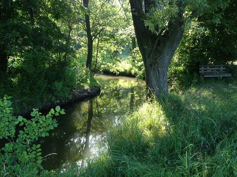 Rittergut Bocka - Entspannung in der Natur