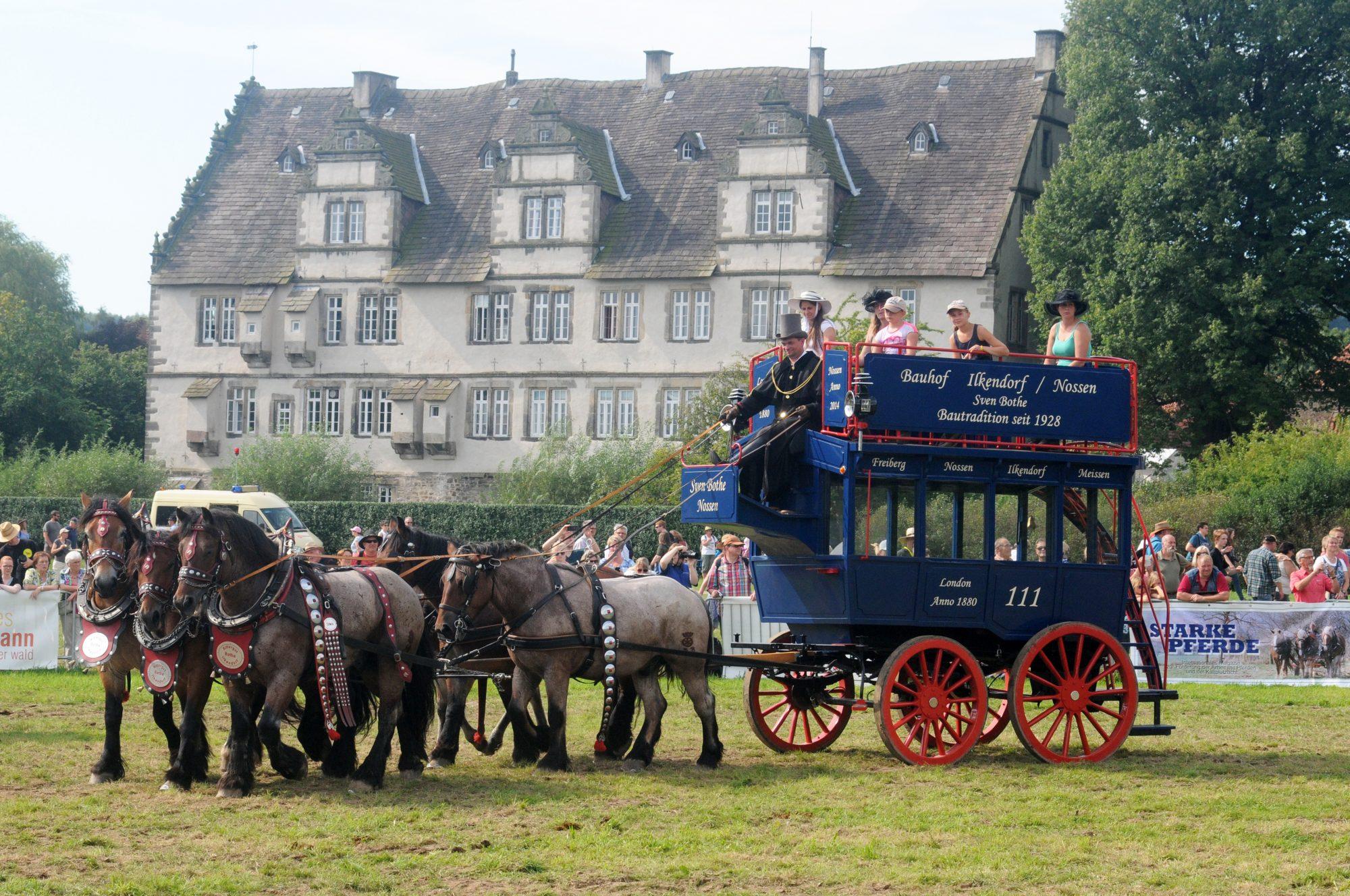 PferdeStark auf dem Schloss und Gut Wendlinghausen