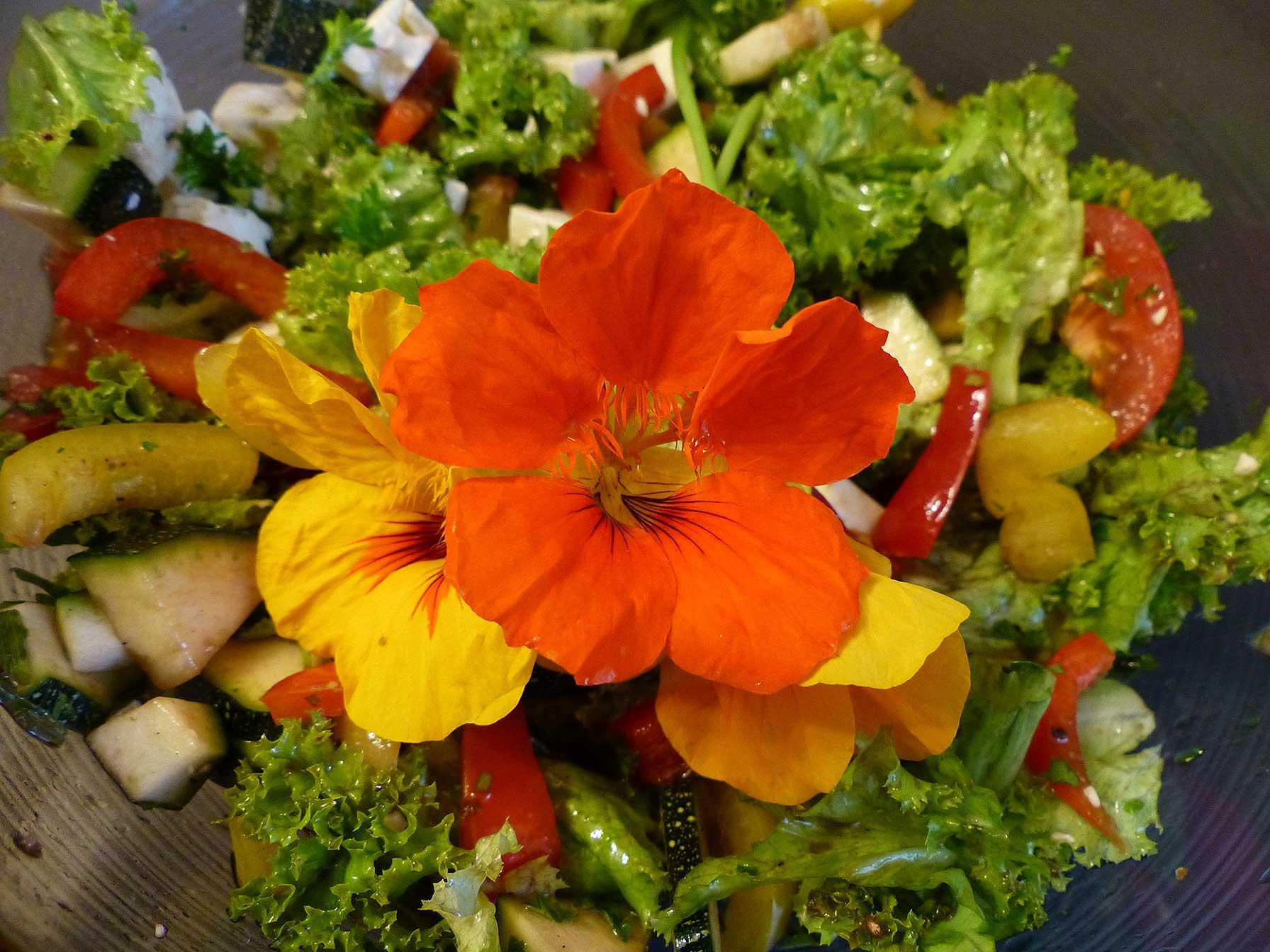 Essbare Kapuzinerkresse-Blüten auf einem Salat dekoriert