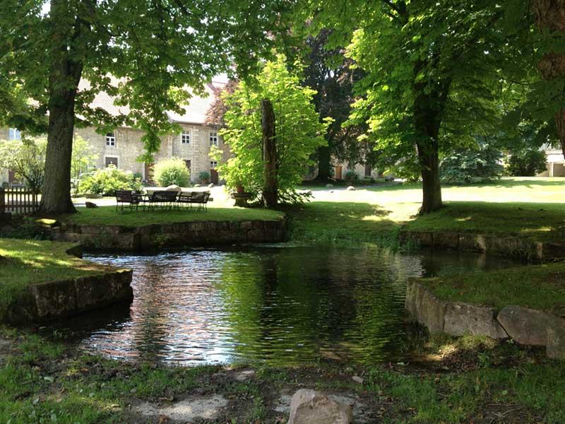 Im Vordergrund sieht man den Teich, dahinter Kastanienbäume durch die die Gebäude von Rittergut Lucklum sichtbar sind