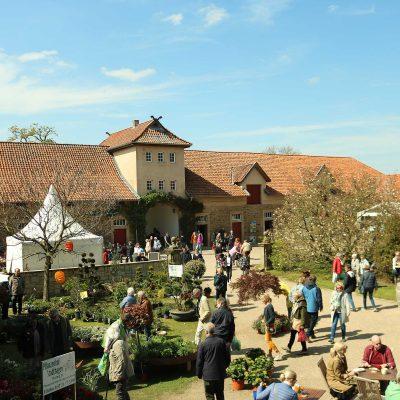 Blick auf den Innenhof mit Menschen und Ständen während der Pflanzentage