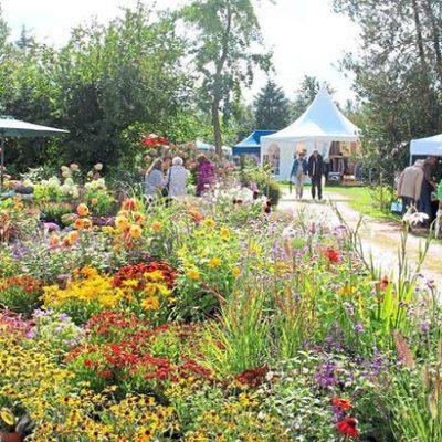 Blick auf Pflanzentöpfe und Pagodenzelte bei der Veranstaltung Gartenfestival auf Schloss Harkotten