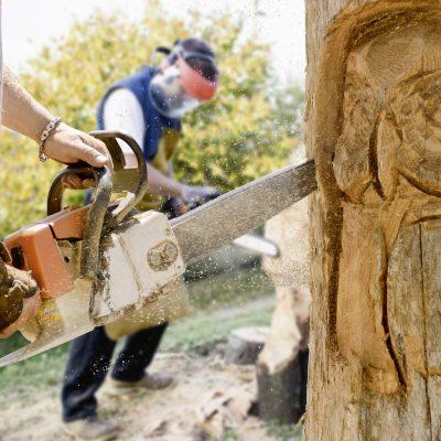 Holzkünstler arbeiten mit der Motorsäge an einem Baum