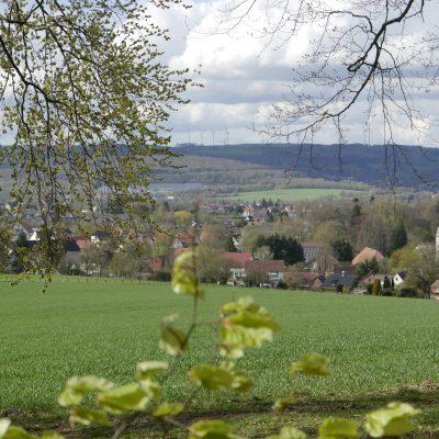 Blick aus dem grünen Ruheforst auf das Schloss Wendlinghausen, welches etwas tiefer liegt