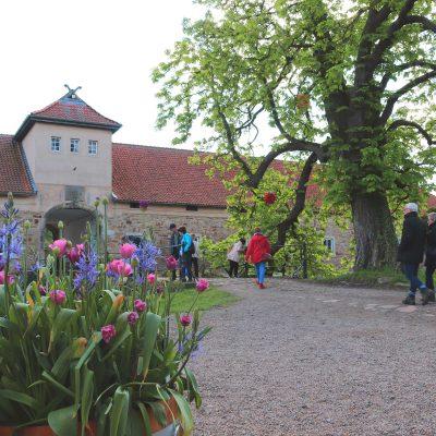 Blick auf das Torhaus von Rittergut Remeringhausen, im Vordergrund ein mit Tulpen bepflanzter Topf, Besucher der Pflanzentage laufen durch das Tor in den Innenhof