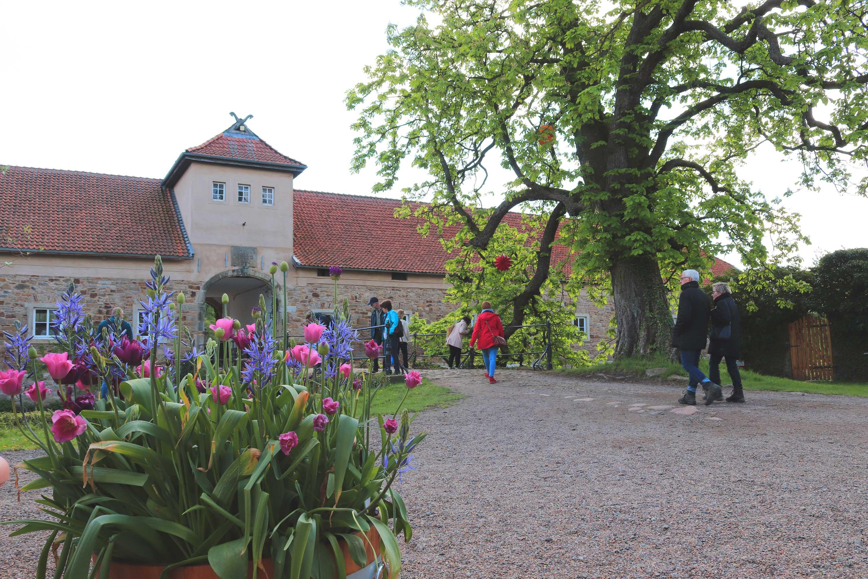 Pflanzentage auf Remeringhausen